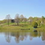 River Jordan Farm - Virginia Waguy Beef Cattle